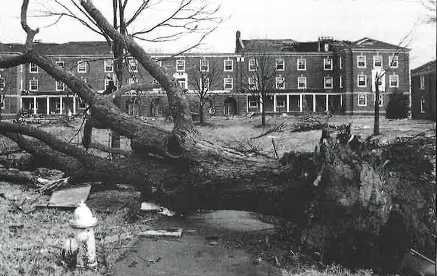 The Browning, Clement, Harned, pictured, Harvill and Archwood buildings were badly damaged during a Jan. 22, 1999, tornado that ripped through Clarksville.