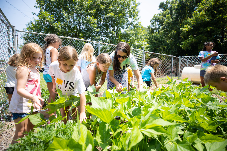 Govs Summer Camp children benefit from Nashville Predators-funded garden at Austin Peay