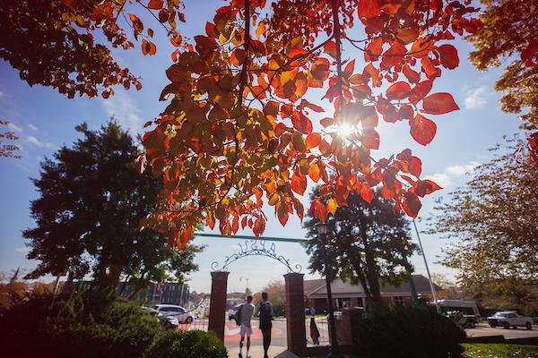 Autumn at APSU
