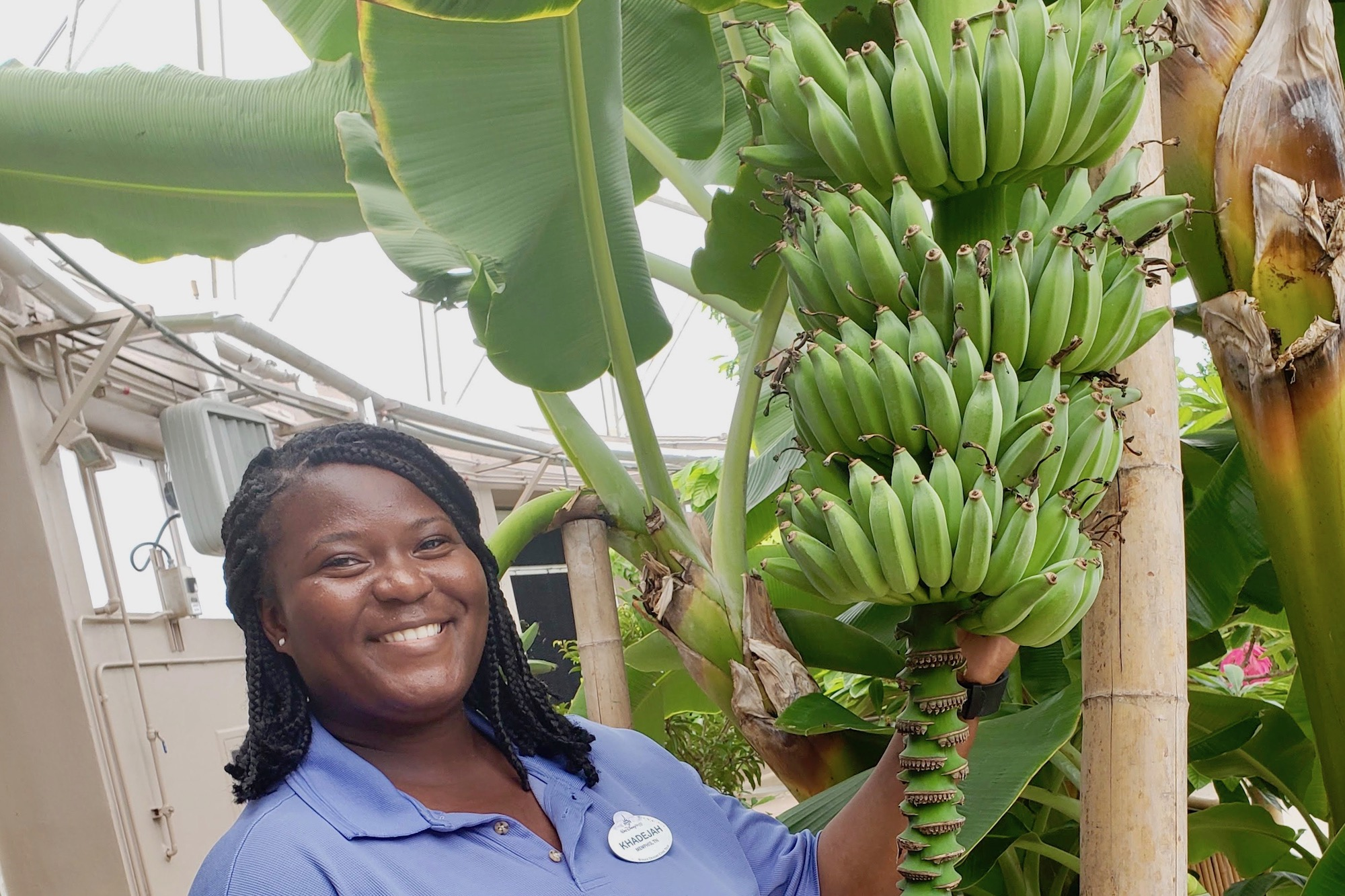Austin Peay agricultural sciences graduate realizing dream at Epcot