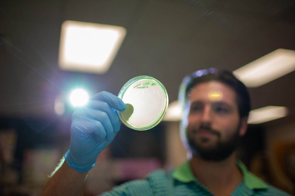 Austin Peay students, professors publish paper about recent work with bacteriophages