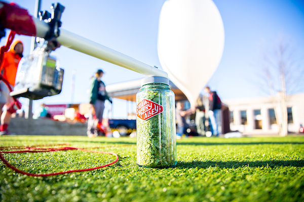 Austin Peay sent hops to near space, now it's in the Stratobeer at Strawberry Alley Ale Works