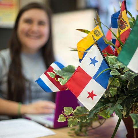 Flags in the Hispanic Cultural Center