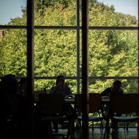students study in Sundquist science building