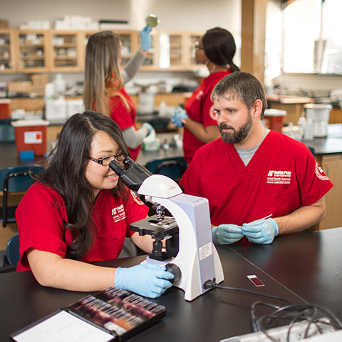 Allied Health students perform experiments in Sundquist lab