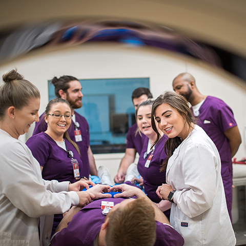 Radiologic Technology: Concentration Sonography
