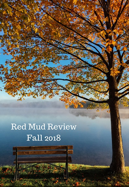 red mud review 2018 cover